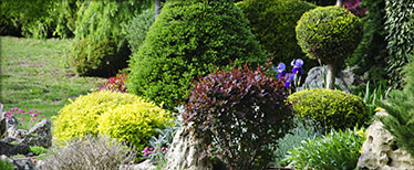 All American Landscape Design Professional Landscaping Services In Omaha Ne